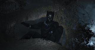 Czarna Pantera - zdjęcie
