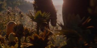 Krótkie ujęcie na Rękawicę Nieskończoności pokazuje, że ta wciąż jest poważnie uszkodzona - zastanawia fakt, dlaczego Thanos jej nie zdjął - być może nie pozwala mu na to jakiś rodzaj kosmicznej energii, który na trwałe połączył artefakt z ręką Szalonego Tytana