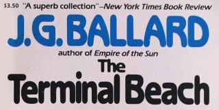 """Postać Jeonga czyta książkę – jest to zbiór opowiadań """"The Terminal Beach"""" J.G. Ballarda, autora """"Imperium Słońca"""". Co ciekawe, jedną z krótkich historii zawartych w tym tomie jest opowiadanie zatytułowane """"End-Game"""", o mężczyźnie, który kłamie na temat swojego życia, nie zdając sobie sprawy, kiedy dojdzie do jego egzekucji."""