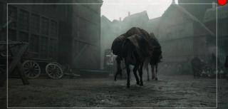 Wiedźmin - zdjęcie od kulis