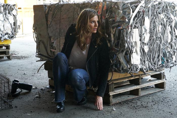 Stana Katic po latach wraca do tematu zwolnienia z serialu Castle: - To było dezorientujące i bolesne