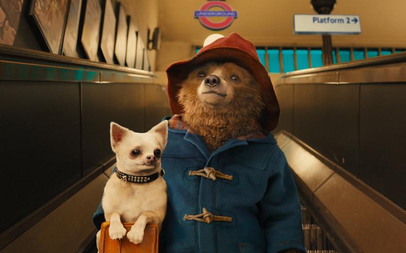 Paddington – będzie nowy serial animowany. Ben Wishaw w obsadzie dubbingu