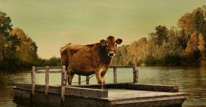 Pierwsza krowa - recenzja filmu