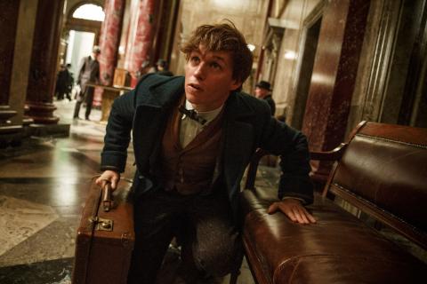 J.K. Rowling ujawniła wielki spoiler z filmu Fantastyczne zwierzęta i jak je znaleźć 2?