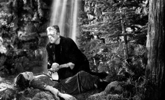 Preprodukcja filmu Bride of Frankenstein chwilowo wstrzymana