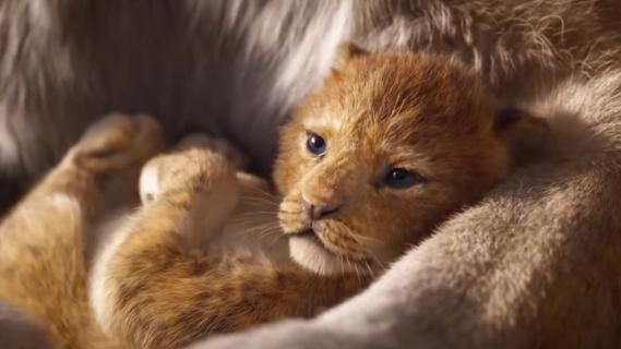 Król lew - recenzje już w sieci. Krytycy podzieleni
