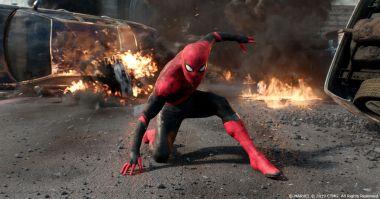 3 piwa, telefon i Tom Holland. Tak się ratuje Spider-Mana w MCU