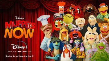 Muppets Now - zwiastun serialu Disney+. Kermit kontra prawnik