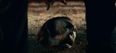 Haloween zabija i Last Night in Soho - Michael Myers i Anya Taylor-Joy na nowych zdjęciach
