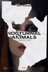 Zwierzęta nocy