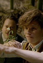 Fantastic Beasts and Where to Find Them: Bowtruckle